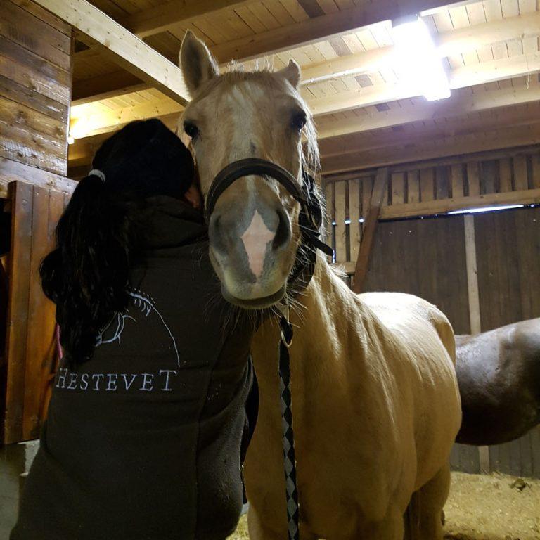 hestevetrinaer1